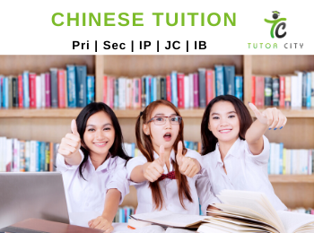 Chinese Tuition for O levels