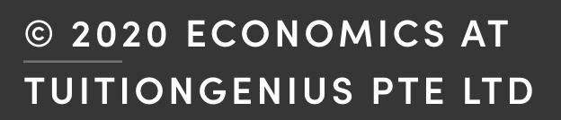 Economics Tuition Genius